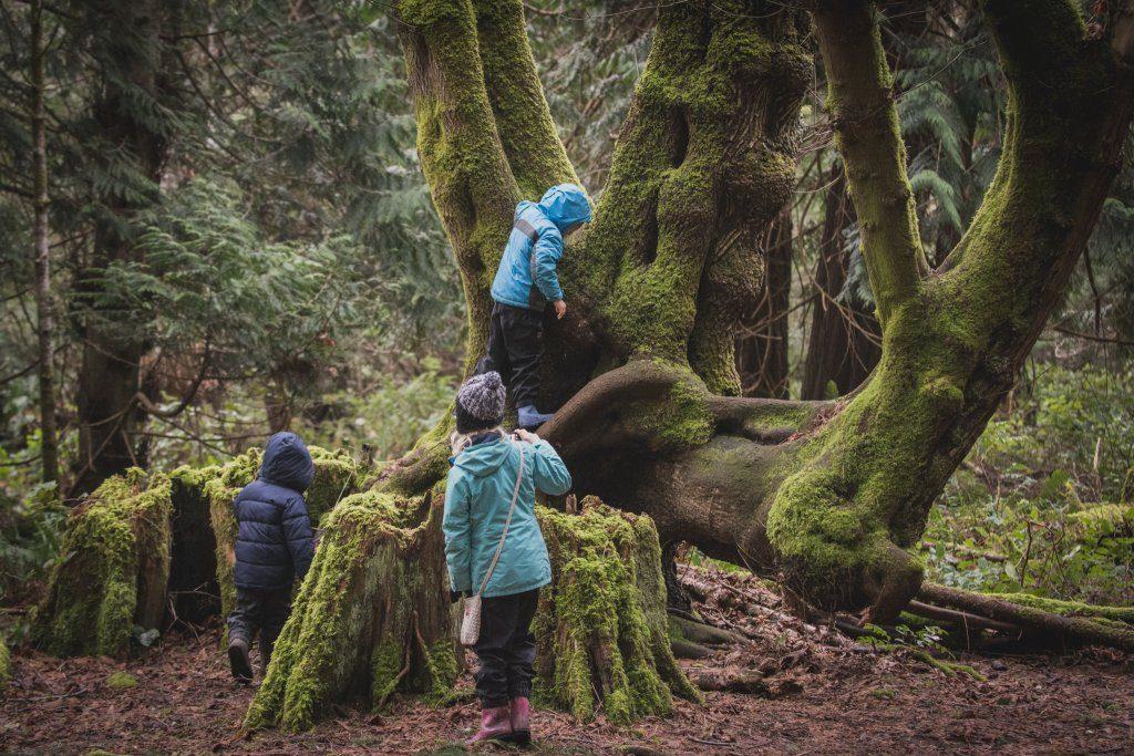 Kids in Helliwell Provincial Park - Hornby Island - Tyler Ingram